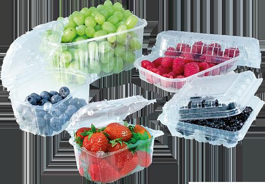 Упаковка для овощей, ягод, фруктов и грибовкупить в Минске